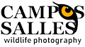 Campos Salles Wildlife Photography