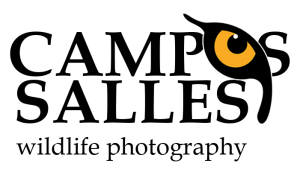 Campos Salles Photo Tours