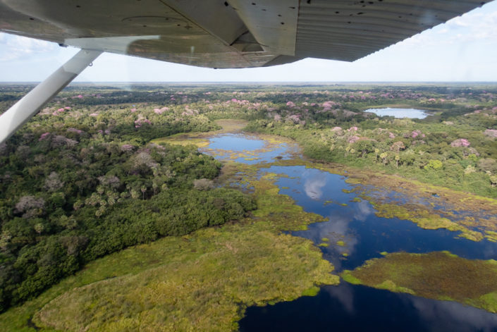 Flying over the Pantanal