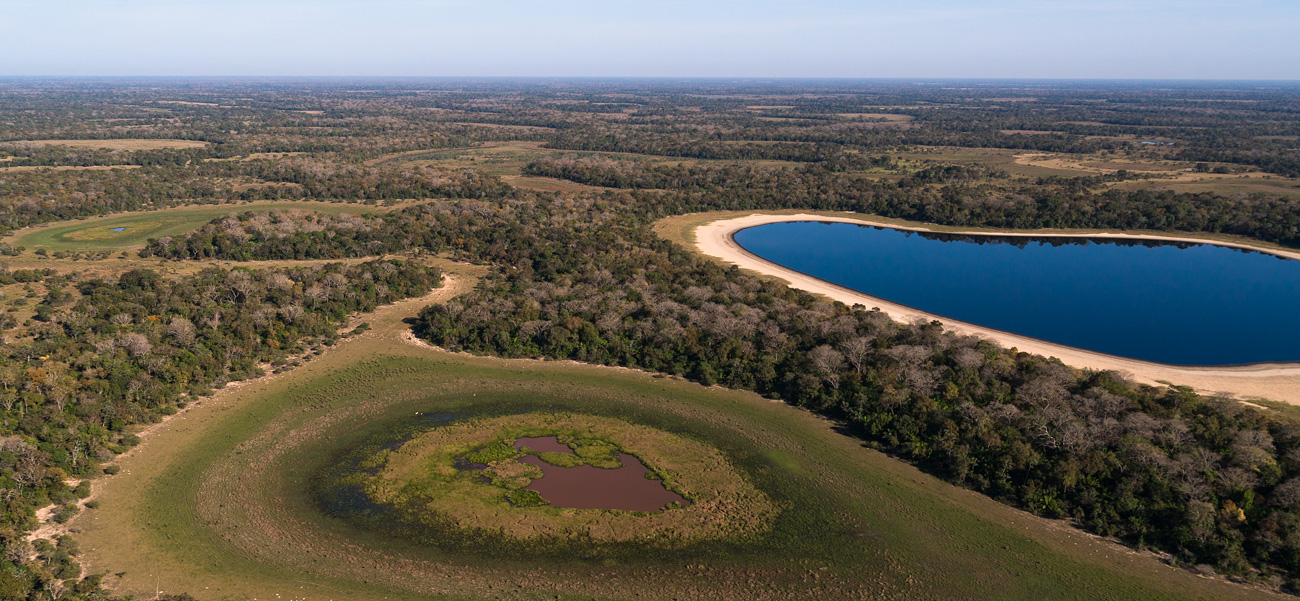 Pantanal photo tours